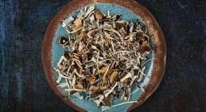 dried magic mushrooms in a round plate
