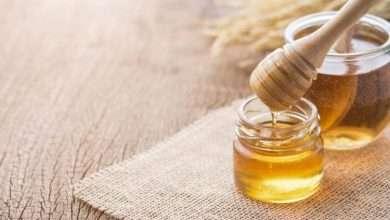 Photo of Magic Mushroom with Honey | Shroom Recipes
