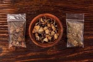 Dry psilocybin magic mushrooms and marijuana buds in plastic bags on brown table.