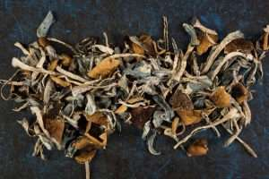 Dried Magic Mushroom